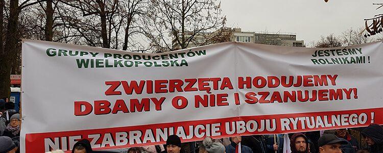 Protest przed Sejmem przeciwko zakazowi uboju rytualnego.