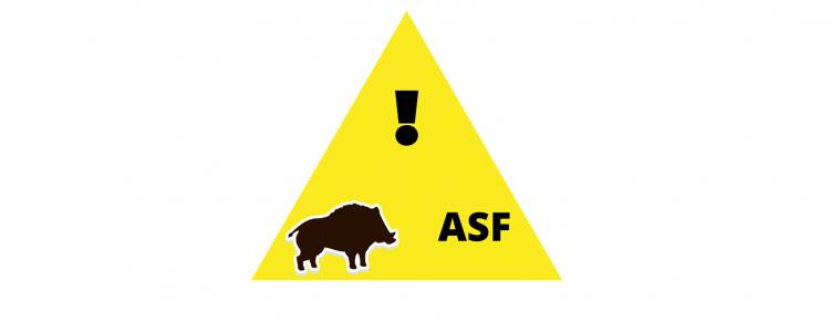 Zaproszenie na szkolenie – tematyka ASF
